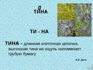 ЦЕП - примитивное орудие для обмолота зерновых культур. Состоит из длинной (д