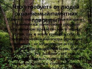Что «требует» от людей охраняемый памятник природы? Один из самых посещаемых