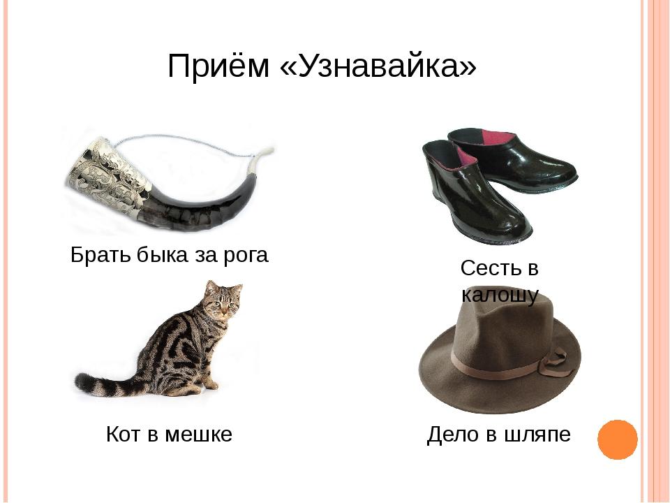 Приём «Узнавайка» Брать быка за рога Сесть в калошу Кот в мешке Дело в шляпе