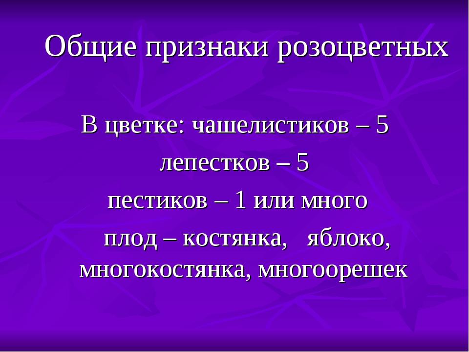 Общие признаки розоцветных В цветке: чашелистиков – 5 лепестков – 5 пестиков...
