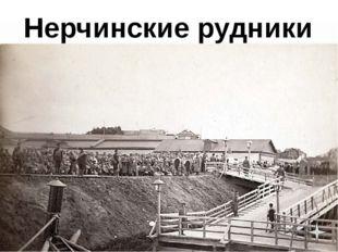 Нерчинские рудники Встреча с мужем Дом Муравьёвой Пожар дома Болезнь Смерть