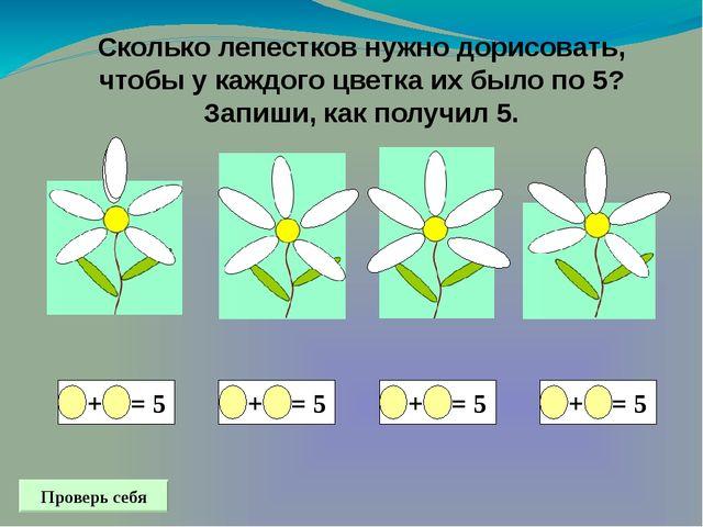 Сколько лепестков нужно дорисовать, чтобы у каждого цветка их было по 5? Зап...