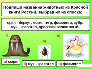 Подпиши названия животных из Красной книги России, выбрав их из списка: орёл