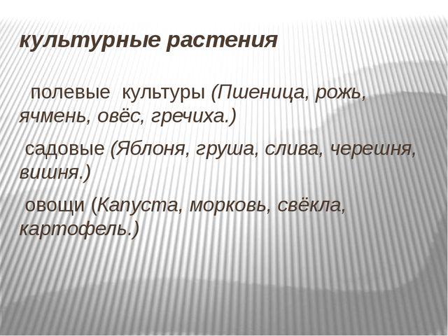 культурные растения полевые культуры (Пшеница, рожь, ячмень, овёс, гречиха.)...