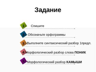 Задание Морфологический разбор слова ПОНИК 4 Спишите 1 Обозначьте орфограммы