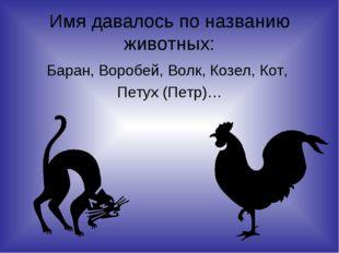 Имя давалось по названию животных: Баран, Воробей, Волк, Козел, Кот, Петух (П