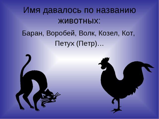 Имя давалось по названию животных: Баран, Воробей, Волк, Козел, Кот, Петух (П...