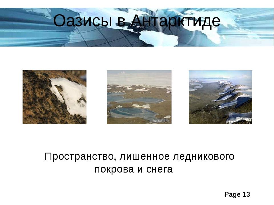 Оазисы в Антарктиде Пространство, лишенное ледникового покрова и снега Page