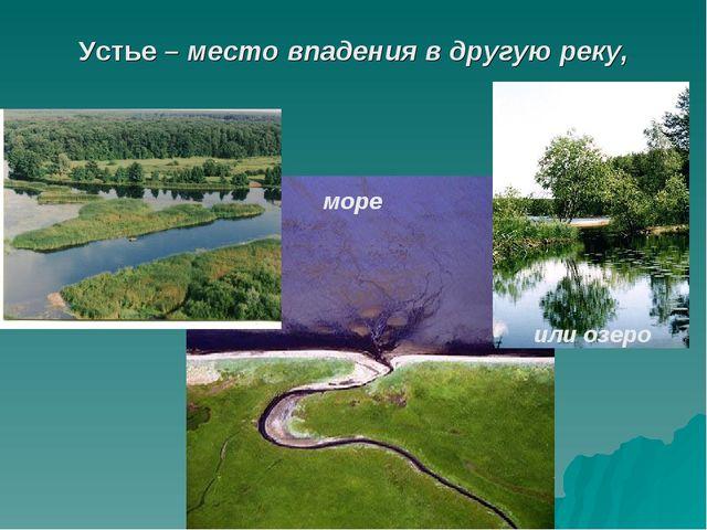 Устье – место впадения в другую реку,