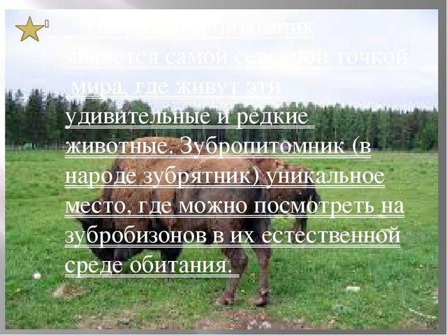 Токсовский питомник является самой северной точкой мира, где живут эти удиви...