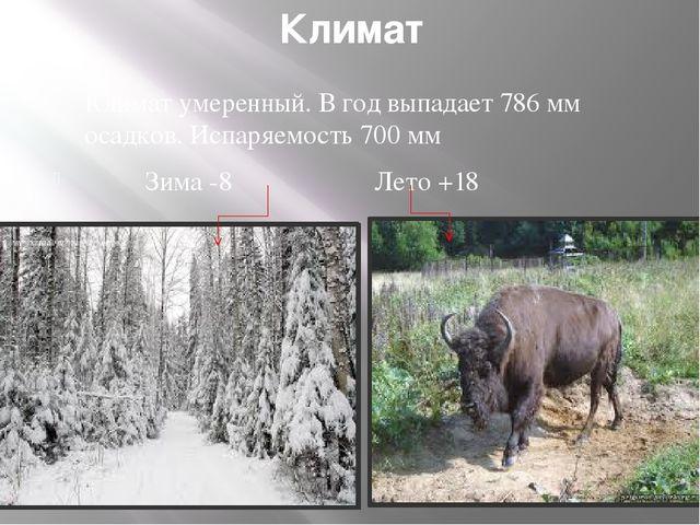 Климат Климат умеренный. В год выпадает 786 мм осадков. Испаряемость 700 мм З...