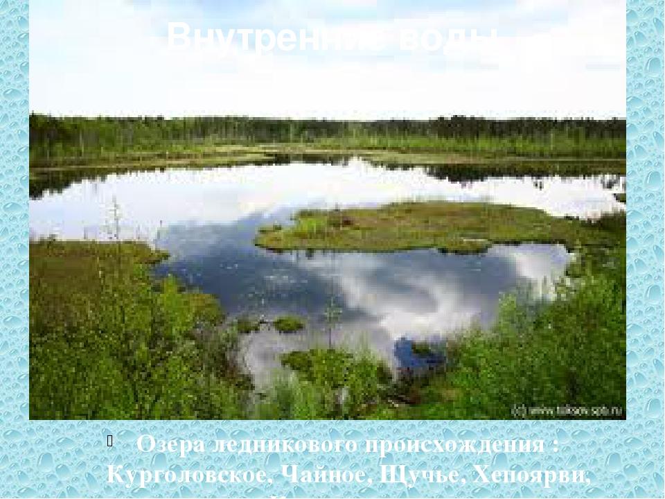 Внутренние воды Озера ледникового происхождения : Курголовское, Чайное, Щучье...