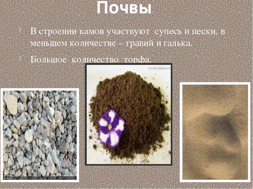 Почвы В строении камов участвуют супесь и пески, в меньшем количестве – грави...