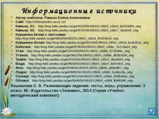 Информационные источники Автор шаблона: Ранько Елена Алексеевна Сайт: http://