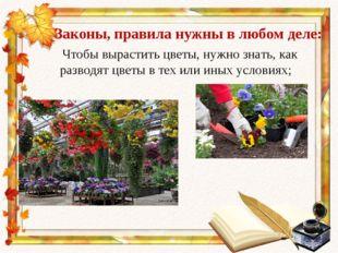 Законы, правила нужны в любом деле: Чтобы вырастить цветы, нужно знать, как р