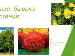 Какие бывают растения Составитель: учитель начальных классов МОБУ МСОШ №3 Еда