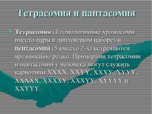 Тетрасомия и пантасомия Тетрасомия (4 гомологичные хромосомы вместо пары в ди