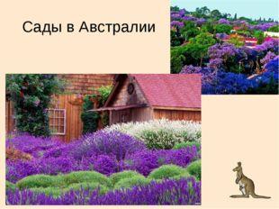 Сады в Австралии