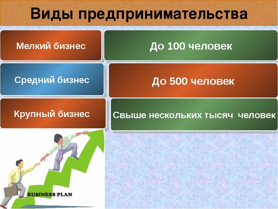 Виды предпринимательства Мелкий бизнес До 100 человек Средний бизнес До 500 ч...