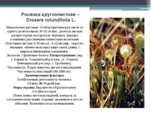 Росянка круглолистная – Drosera rotundifolia L. Многолетнее растение. Стебли