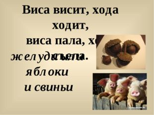 Виса висит, хода ходит, виса пала, хода съела. желуди или яблоки и свиньи