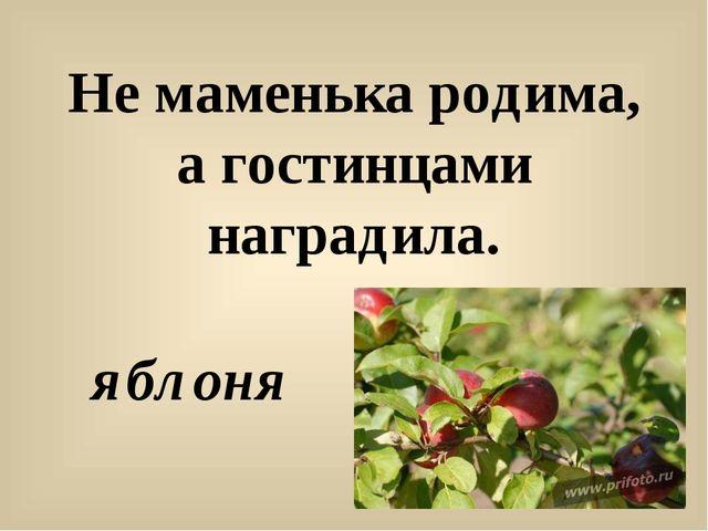 Не маменька родима, а гостинцами наградила. яблоня