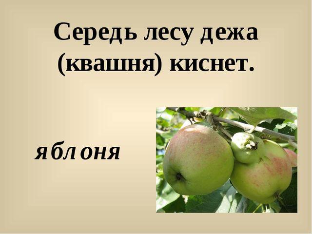 Середь лесу дежа (квашня) киснет. яблоня