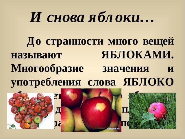 И снова яблоки… До странности много вещей называют ЯБЛОКАМИ. Многообразие зна...