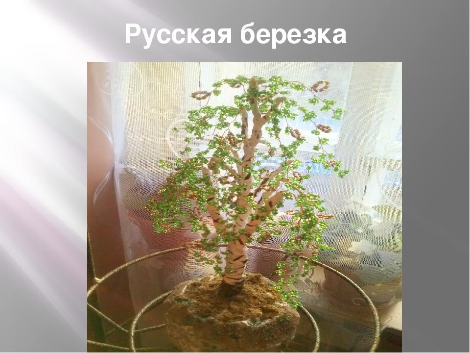 Русская березка