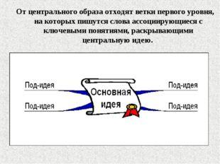 От центрального образа отходят ветки первого уровня, на которых пишутся слова