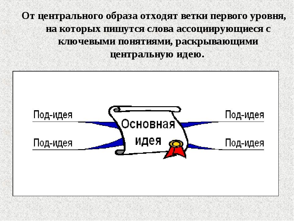 От центрального образа отходят ветки первого уровня, на которых пишутся слова...