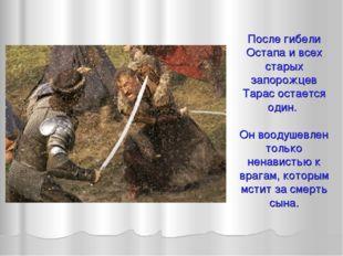 После гибели Остапа и всех старых запорожцев Тарас остается один. Он воодушев