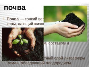 Почва — тонкий верхний слой земной коры, дающий жизнь растениям. Почва - сове