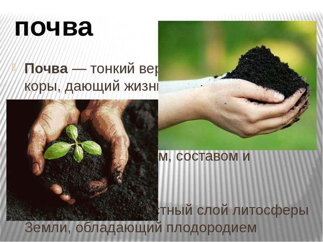Почва — тонкий верхний слой земной коры, дающий жизнь растениям. Почва - сове...