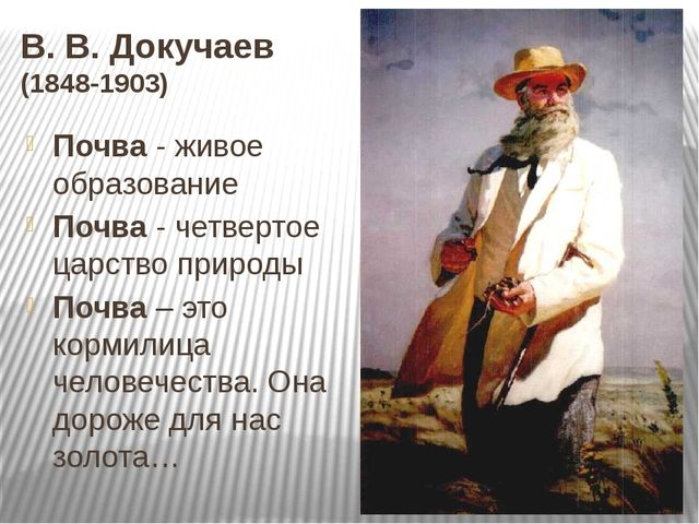 В. В. Докучаев (1848-1903) Почва - живое образование Почва - четвертое царств...
