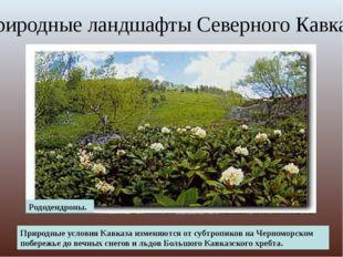 Вид на Эльбрус Поляна перед перевалом Кват. Природные условия Кавказа изменяю