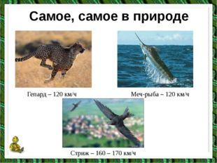 Самое, самое в природе Гепард – 120 км/ч Меч-рыба – 120 км/ч Стриж – 160 – 17