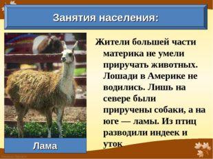 Жители большей части материка не умели приручать животных. Лошади в Америке н