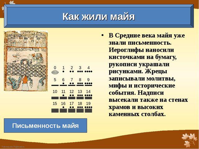 В Средние века майя уже знали письменность. Иероглифы наносили кисточками на...
