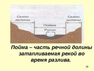 Пойма – часть речной долины затапливаемая рекой во время разлива.