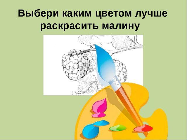 Выбери каким цветом лучше раскрасить малину