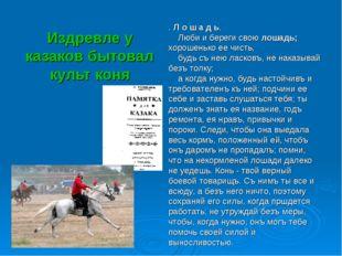 Издревле у казаков бытовал культ коня . Л о ш а д ь. Люби и береги свою лошад