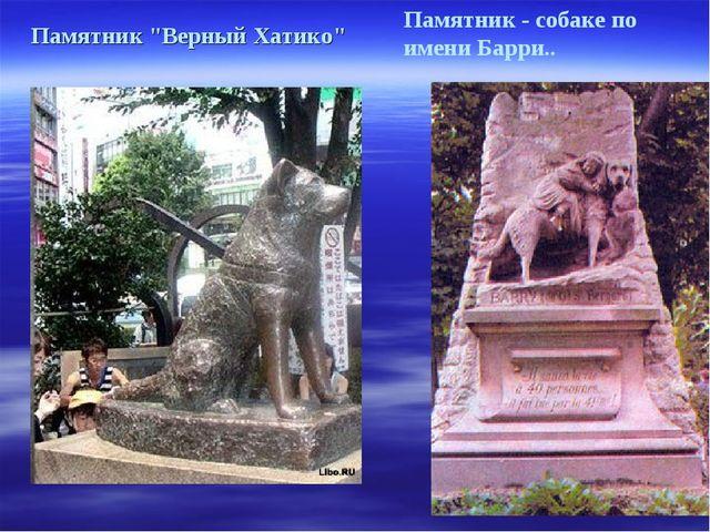 """Памятник - собаке по имени Барри.. Памятник """"Верный Хатико"""""""