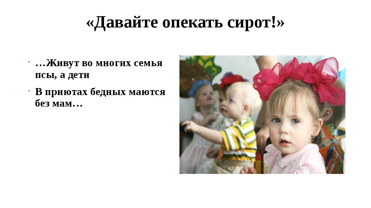 «Давайте опекать сирот!» …Живут во многих семья псы, а дети В приютах бедных...