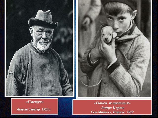 «Пастух» Август Зандер. 1913 г. «Рынок животных» Андре Керте Сен-Мишель, Пари...