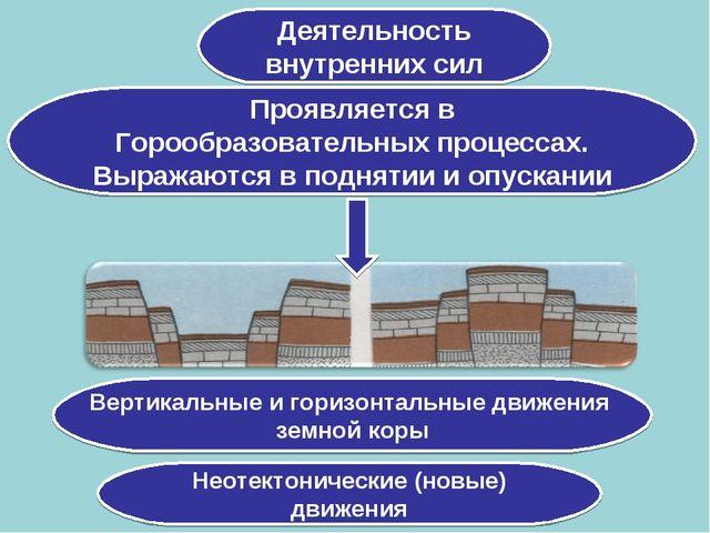 Деятельность внутренних сил Проявляется в Горообразовательных процессах. Выра...