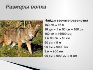 Найди верные равенства 160 см = 16 м 16 дм = 1 м 60 см = 160 см 160 см = 1600