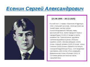 Есенин Сергей Александрович (21.09.1895 – 28.12.1925) Русский поэт. С первых