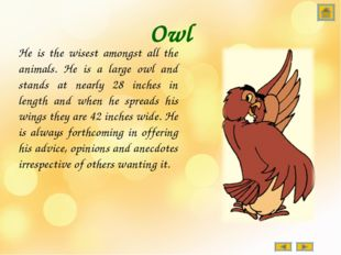 Owl He is the wisest amongst all the animals. He is a large owl and stands at