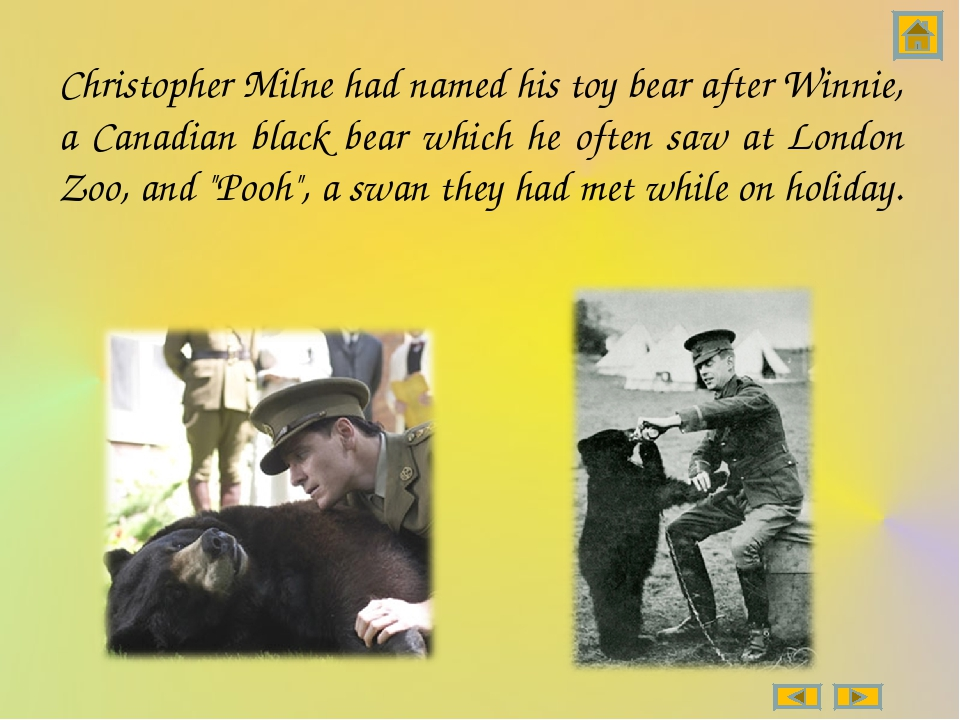 Christopher Milne had named his toy bear after Winnie, a Canadian black bear...